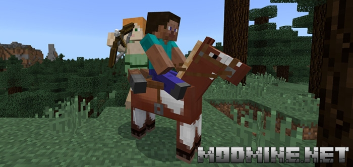 Мод 2 Player Horse Riding 1.2.0, 1.2.6, 1.2.8